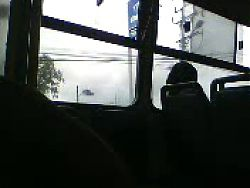 On Bus Masturbation