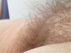 real close up of her hairy bush.